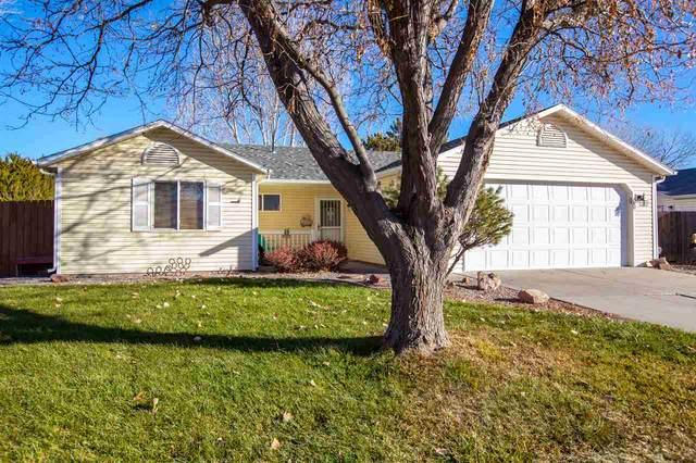 1164 Locust Street, Fruita, CO 81521 (MLS #20206032) :: Lifestyle Living Real Estate