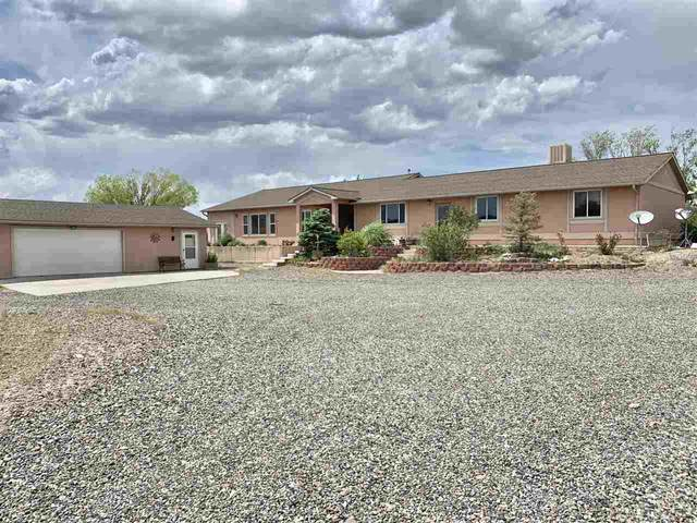 33376 Mill Tailing Road, Whitewater, CO 81521 (MLS #20206077) :: The Danny Kuta Team