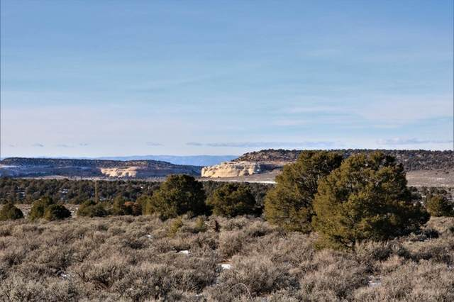 12601 Bs Road, Glade Park, CO 81523 (MLS #20206152) :: The Christi Reece Group