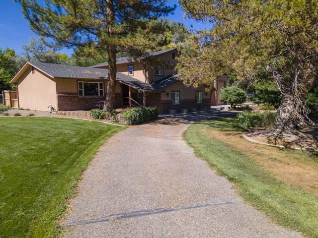 652 Terrace Drive, Grand Junction, CO 81507 (MLS #20206178) :: The Danny Kuta Team