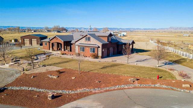 1306 Gold Lake Drive, Loma, CO 81524 (MLS #20206192) :: The Danny Kuta Team