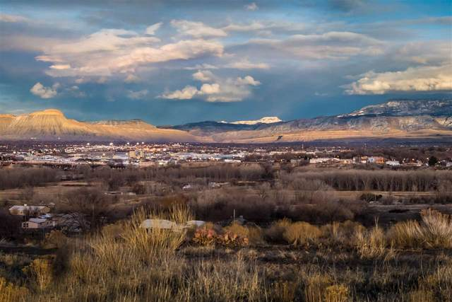 305 Little Park Road, Grand Junction, CO 81507 (MLS #20206202) :: Western Slope Real Estate