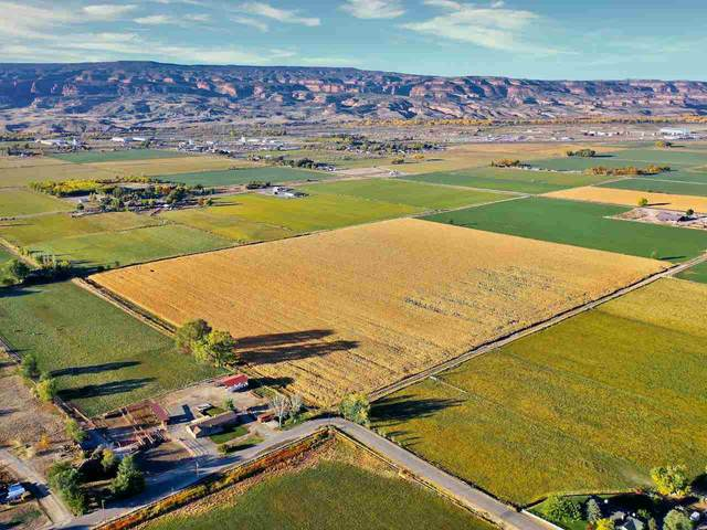 TBD L 1/2 Road, Fruita, CO 81521 (MLS #20206271) :: The Christi Reece Group