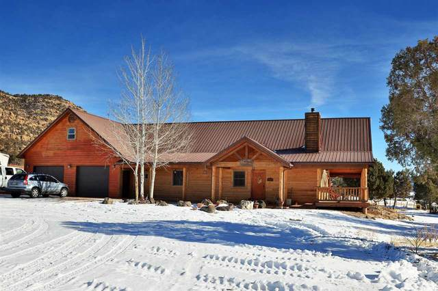 17492 Kimball Creek Road, Collbran, CO 81624 (MLS #20210048) :: The Kimbrough Team | RE/MAX 4000