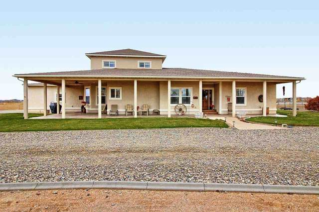 1871 High Point Court, Fruita, CO 81521 (MLS #20210066) :: Lifestyle Living Real Estate