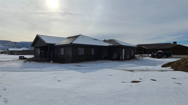 1232 Fairway Drive, Fruita, CO 81521 (MLS #20210103) :: The Kimbrough Team | RE/MAX 4000