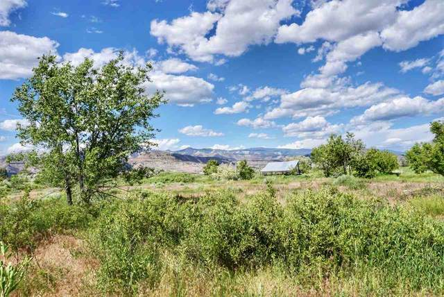 49088 Ke Road, Mesa, CO 81643 (MLS #20210114) :: The Grand Junction Group with Keller Williams Colorado West LLC