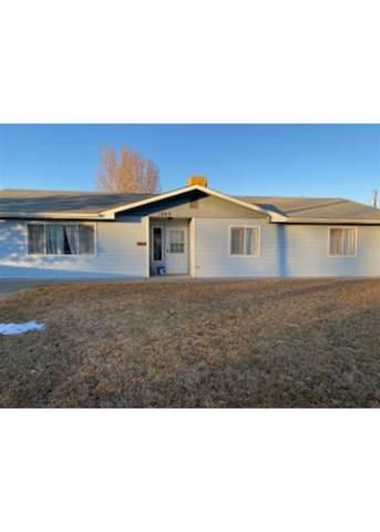 1049 E Kiefer Avenue, Fruita, CO 81521 (MLS #20210121) :: Lifestyle Living Real Estate