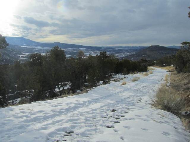 TBD 55 Road, Collbran, CO 81624 (MLS #20210202) :: The Grand Junction Group with Keller Williams Colorado West LLC
