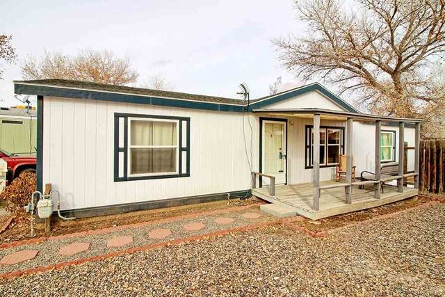1341 Aquarius Avenue, Fruita, CO 81521 (MLS #20210205) :: The Kimbrough Team | RE/MAX 4000