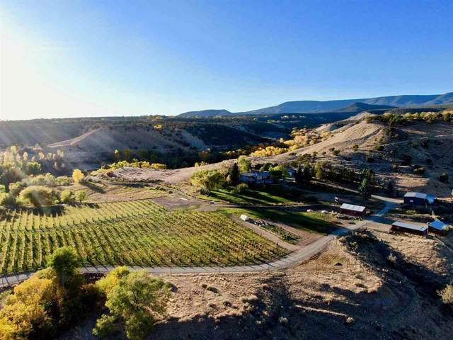 35837 Hanson Mesa Road, Hotchkiss, CO 81419 (MLS #20210208) :: The Christi Reece Group