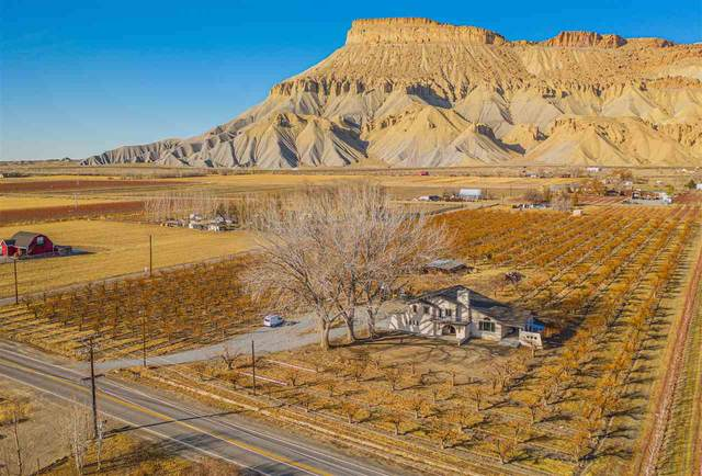 3540 G Road, Palisade, CO 81526 (MLS #20210242) :: The Kimbrough Team | RE/MAX 4000