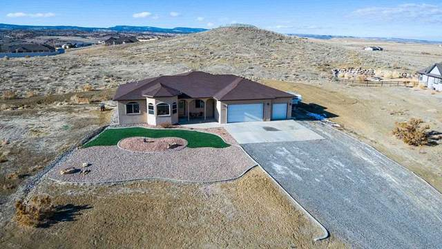 6130 La Golondrina Court, Whitewater, CO 81527 (MLS #20210261) :: The Danny Kuta Team