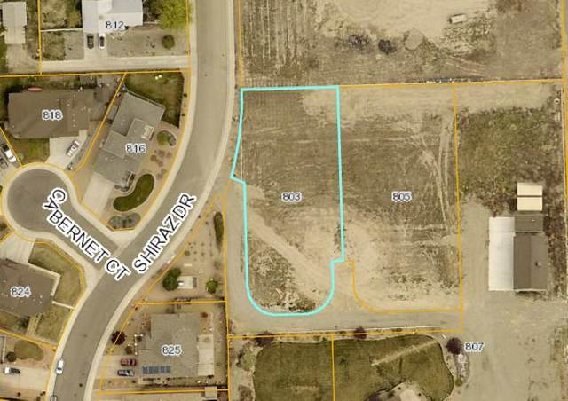803 & 805 Shiraz Drive, Palisade, CO 81526 (MLS #20210266) :: The Kimbrough Team | RE/MAX 4000