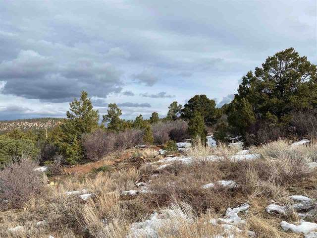 Lot 25 Elk Reserve Road, Glade Park, CO 81523 (MLS #20210278) :: The Christi Reece Group