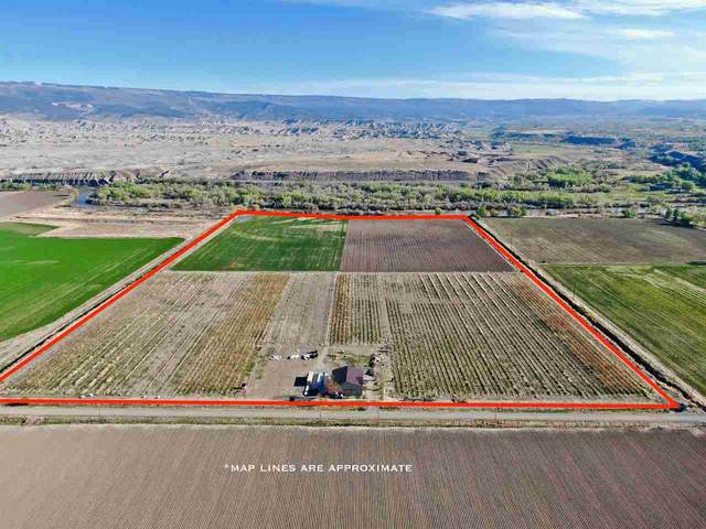 18889 Homestead Road, Delta, CO 81416 (MLS #20210357) :: Lifestyle Living Real Estate