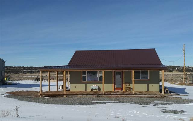 16100 Bs Road, Glade Park, CO 81523 (MLS #20210383) :: Lifestyle Living Real Estate