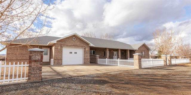 265 29 3/4 Road, Grand Junction, CO 81503 (MLS #20210402) :: CENTURY 21 CapRock Real Estate