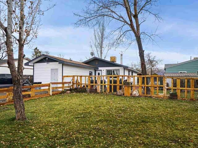 560 W Pabor Way, Fruita, CO 81521 (MLS #20210420) :: Lifestyle Living Real Estate