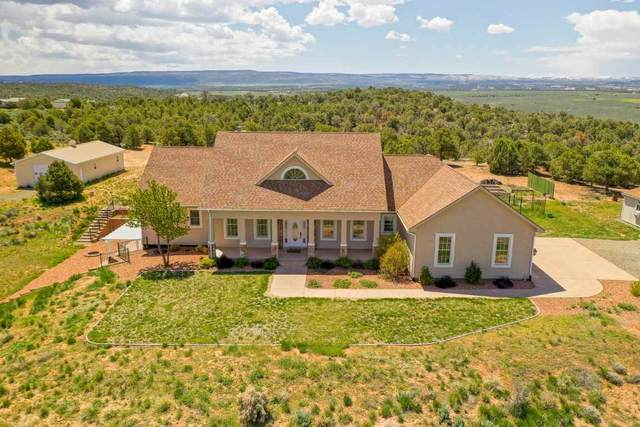 13098 A 3/4 Road, Glade Park, CO 81523 (MLS #20210425) :: The Grand Junction Group with Keller Williams Colorado West LLC