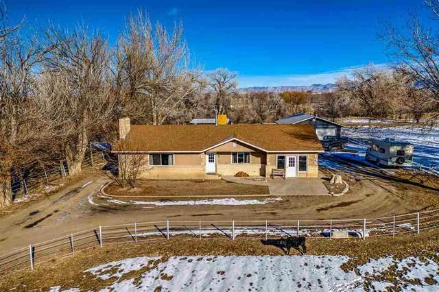 1816 K 4/10 Road, Fruita, CO 81521 (MLS #20210458) :: The Christi Reece Group