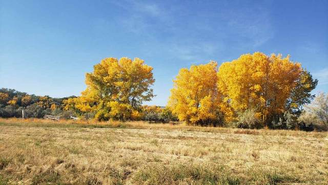 2869 C 1/2 Road, Grand Junction, CO 81501 (MLS #20210497) :: The Christi Reece Group