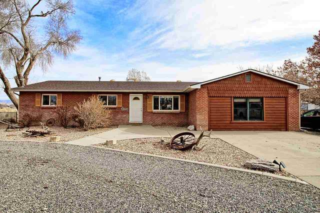 186 29 1/2 Road, Grand Junction, CO 81503 (MLS #20210527) :: CENTURY 21 CapRock Real Estate