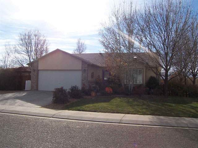 646 Bayberry Court, Fruita, CO 81521 (MLS #20210584) :: The Christi Reece Group