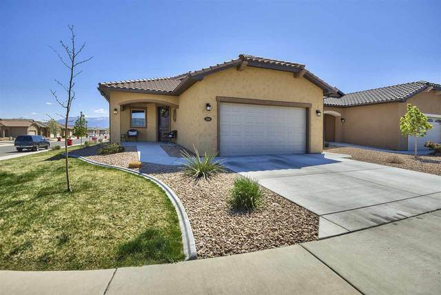 214 Dry Mesa Drive, Grand Junction, CO 81503 (MLS #20210603) :: Lifestyle Living Real Estate