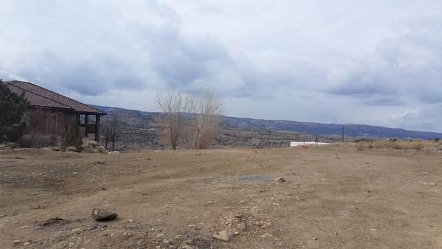 209 River Ridge Drive, Grand Junction, CO 81503 (MLS #20210604) :: The Joe Reed Team
