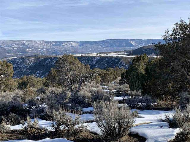 TBD Horse Canyon Road, De Beque, CO 81630 (MLS #20210636) :: The Kimbrough Team | RE/MAX 4000