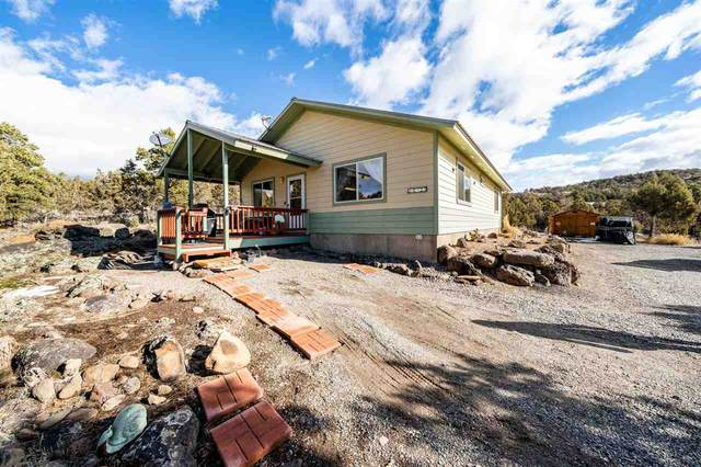 18735 Ward Creek Road, Cedaredge, CO 81413 (MLS #20210646) :: The Grand Junction Group with Keller Williams Colorado West LLC