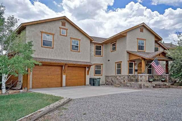 604 Sabeta Drive, Ridgway, CO 81401 (MLS #20210651) :: Lifestyle Living Real Estate