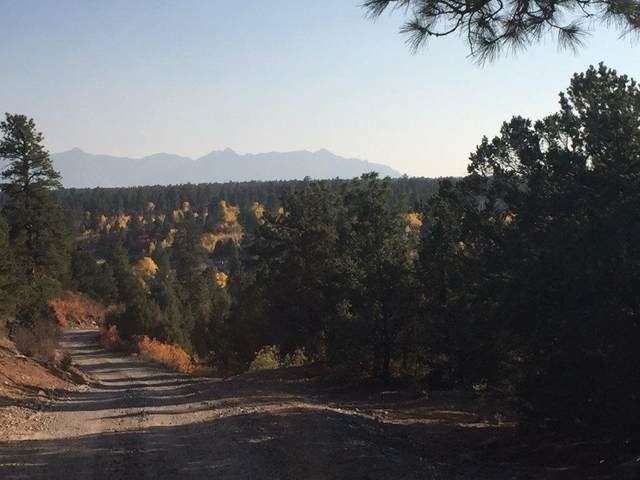 TBD Wisteria Drive, Montrose, CO 81403 (MLS #20210762) :: Lifestyle Living Real Estate