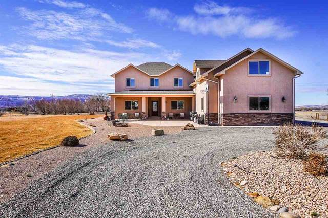 989 Kestrel Court, Grand Junction, CO 81505 (MLS #20210779) :: The Christi Reece Group
