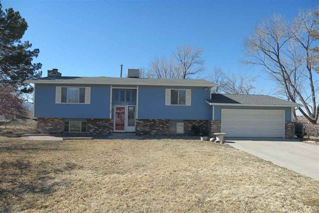 707 Ivy Place, Grand Junction, CO 81506 (MLS #20210855) :: Western Slope Real Estate