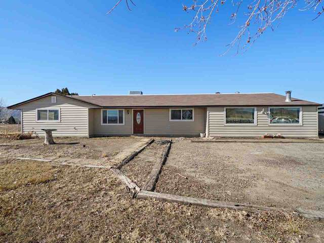 895 21 Road, Fruita, CO 81521 (MLS #20210856) :: The Christi Reece Group