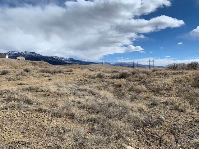 3469 D Road, Palisade, CO 81526 (MLS #20210885) :: The Christi Reece Group