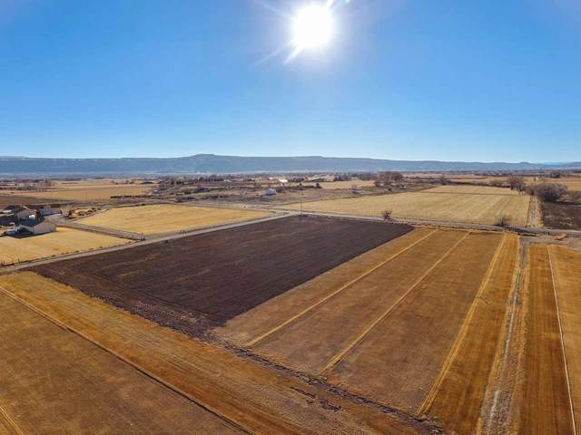 1136 22 1/2 Road, Grand Junction, CO 81505 (MLS #20210892) :: The Grand Junction Group with Keller Williams Colorado West LLC