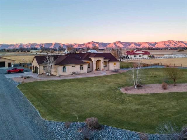 2186 J 1/4 Road, Grand Junction, CO 81505 (MLS #20210975) :: CENTURY 21 CapRock Real Estate