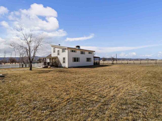 1195 19 Road, Fruita, CO 81521 (MLS #20211027) :: The Grand Junction Group with Keller Williams Colorado West LLC