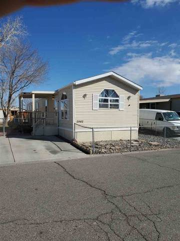 2982 Yew Leaf Willow Avenue, Grand Junction, CO 81504 (MLS #20211152) :: The Grand Junction Group with Keller Williams Colorado West LLC