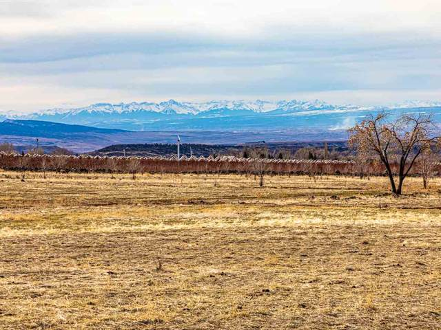 TBD NW Sage Avenue, Cedaredge, CO 81413 (MLS #20211232) :: CENTURY 21 CapRock Real Estate