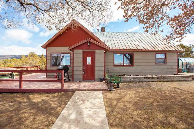 13784 59 Road, Collbran, CO 81624 (MLS #20211264) :: Lifestyle Living Real Estate