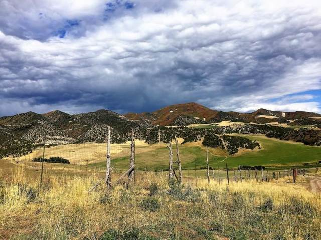 4696 County Road 314, New Castle, CO 81647 (MLS #20211266) :: The Kimbrough Team | RE/MAX 4000