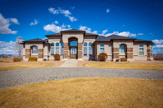 1402 Bridle Path Court, Fruita, CO 81521 (MLS #20211269) :: CENTURY 21 CapRock Real Estate