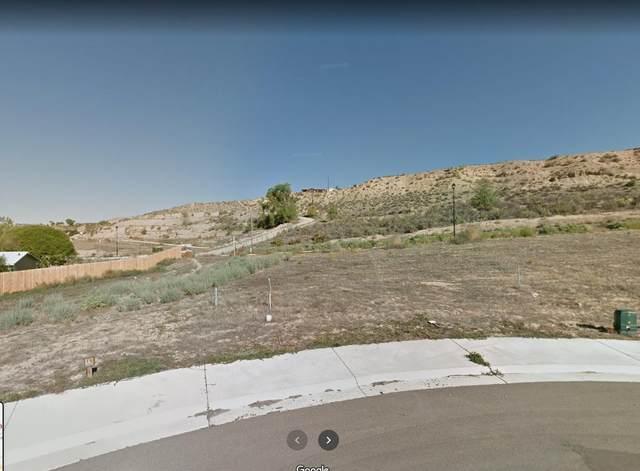 393 Roan Court, Silt, CO 81652 (MLS #20211300) :: CENTURY 21 CapRock Real Estate