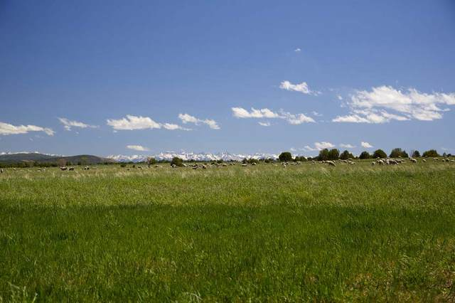 TBD Bostwick Park Street, Montrose, CO 81401 (MLS #20211305) :: Lifestyle Living Real Estate