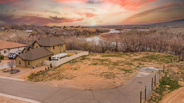 2132 Canyon Wren Court, Grand Junction, CO 81507 (MLS #20211346) :: The Kimbrough Team | RE/MAX 4000