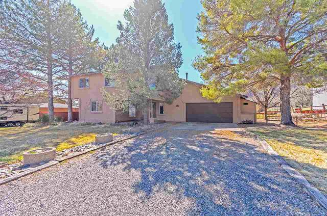 514 Tiara Drive, Grand Junction, CO 81507 (MLS #20211377) :: The Kimbrough Team | RE/MAX 4000